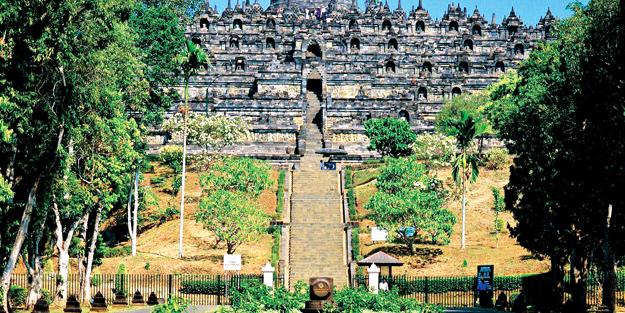 Asya'nın 'kaplan'larından ENDONEZYA