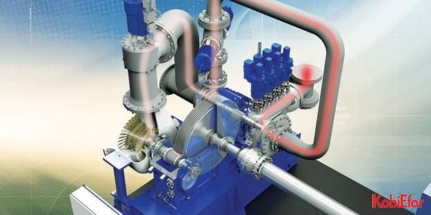 Siemens, Türkiye'de biyokütleye enerji veriyor