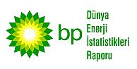 2014 BP Dünya Enerji İstatistikleri Raporu