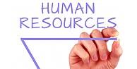 İnsan Kaynakları