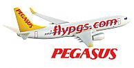 Pegasus ve Multinet UP iş ortaklığı