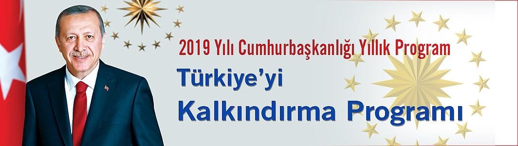 Türkiye'yi kalkındırma programı