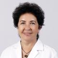 Prof. Dr. Sibel Özekmekçi