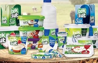 Dünyada 20 ülkeye ihracat yapan süt ve süt ürünleri...