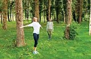 Orman banyosu, Türkiye'de ilk kez NG Sapanca'da