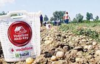 Vodafone Akıllı Köy'de ilk patates hasadı yapıldı